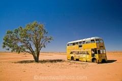 Derelict Double-Decker Bus and Desert Oak, Camerons Corner - Strzelecki Track Road, Outback, South Australia, Australia